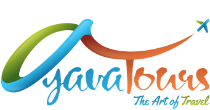 ayavagroup
